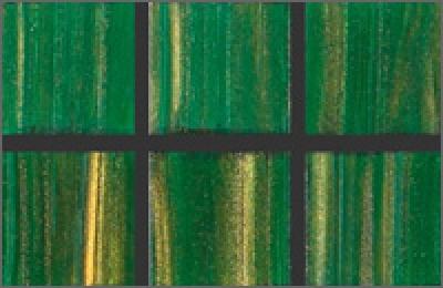 Мозаика стеклянная однотонная Rose Gold Star 10х10 мм GA26