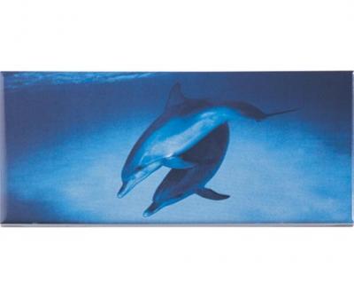 Плитка фарфоровая Serapool бордюр с рисунком 12,5х25 см Дельфин