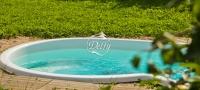 Бассейн Delfy овальный Веттис 4 размер 4,05х2,50 м